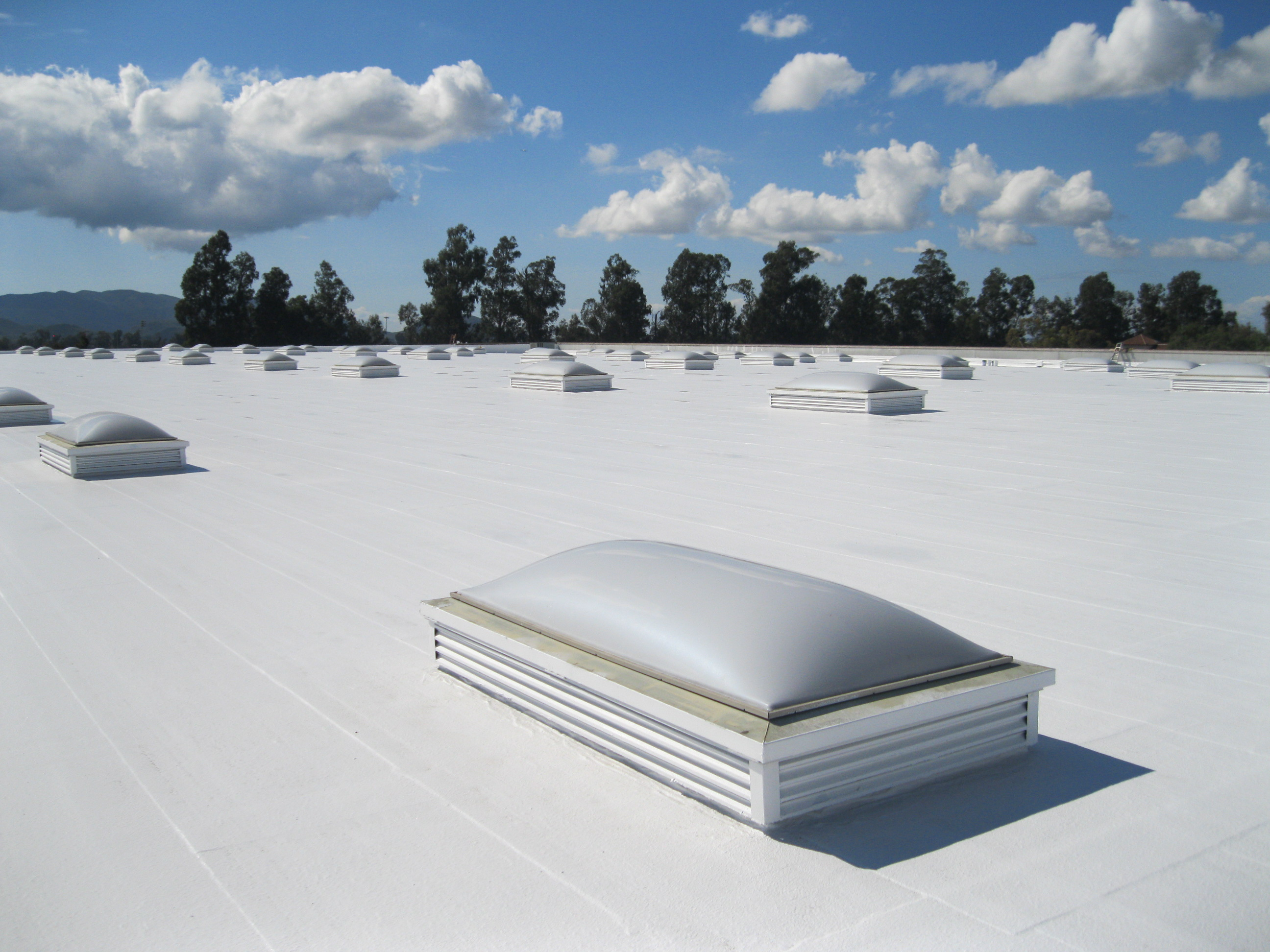 TPO Roofing Systems